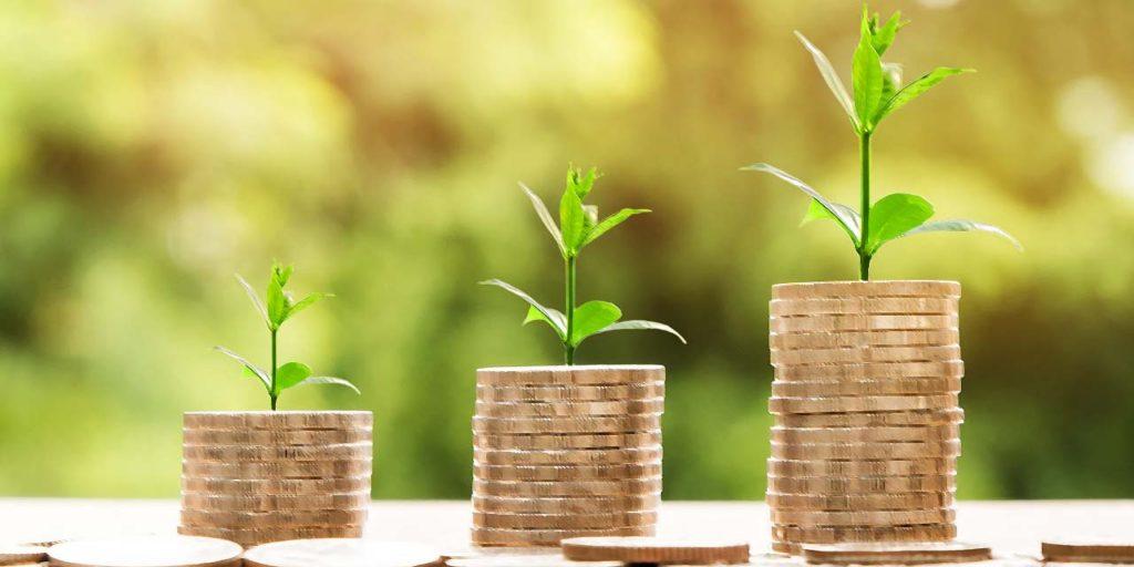 Jak vydělat peníze na internetu, růst