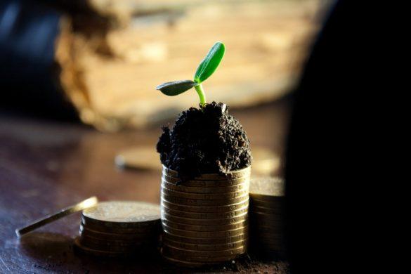 pasivní příjem mince