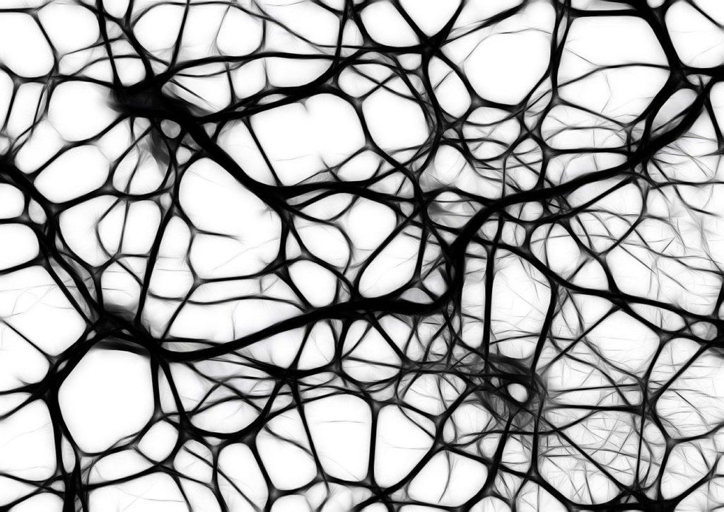procvičování mozku