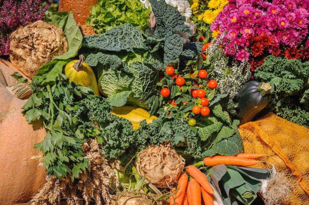 různé zdravé potraviny