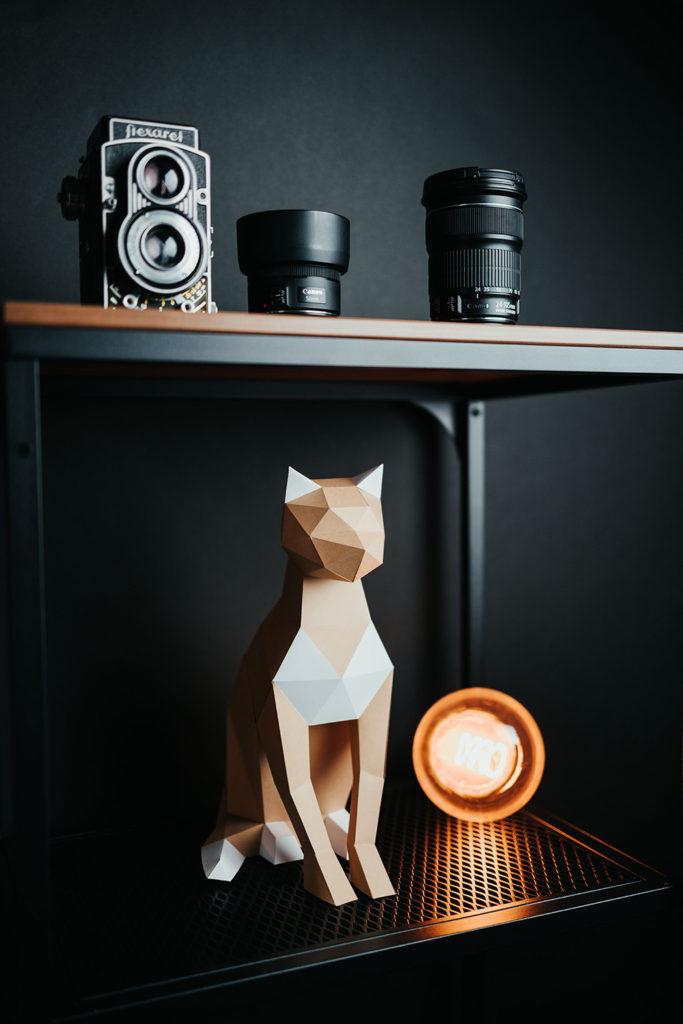 papertime kočka