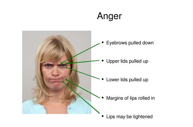 První emocí je vztek.