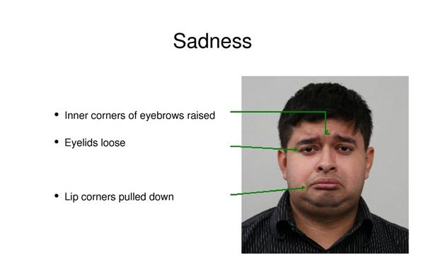 Šestou emocí je smutek.