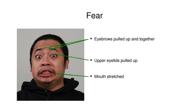 Druhou emocí je strach.
