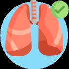 dýchání